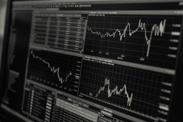 Top 10 Tips for the Rookie Traders in the Forex Market